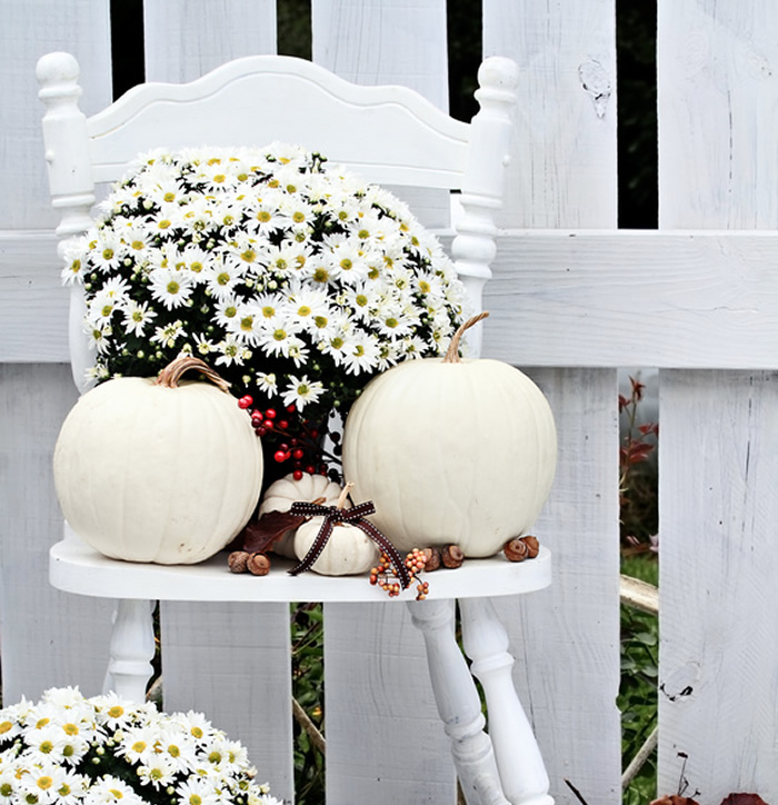 How to Decorate Your Home With White Pumpkins - Mums